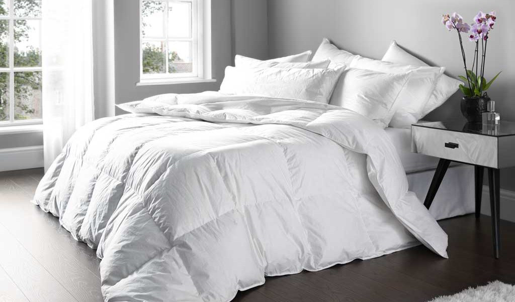 Finest Duvets, Pillows & Toppers by Euroquilt