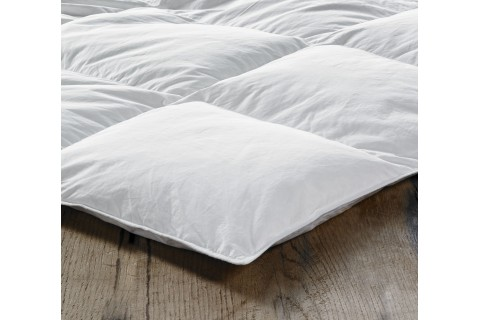 Standard Goose Feather and Down Duvets