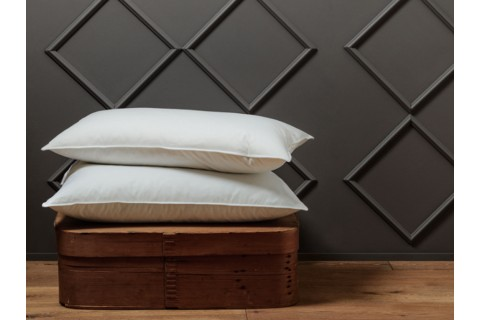 Surrey Down Luxurious Home Pillow Collection